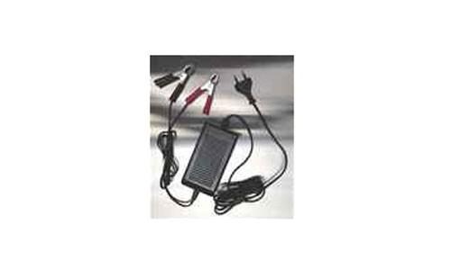 Ladegerät für Elektroschubkarre Standard/Power Bild 1