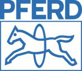 Schleifkappe Form A f.10x15 K150 Pferd Bild 2